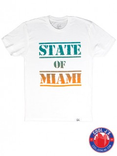 LYFE STATE OF MIAMI DOLPHINS WHITE TEE at Cool J's in Miami